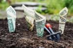Jak osiągać dochód pasywny prowadząc biznes (i nie ryzykować bankructwa)?